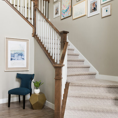 Beach style carpeted wood railing staircase photo in Denver with carpeted risers