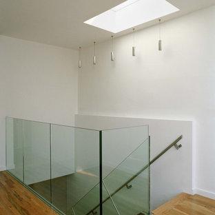 Immagine di una scala a rampa dritta minimalista di medie dimensioni con pedata in legno, alzata in vetro e parapetto in metallo