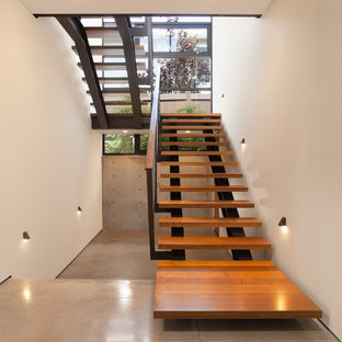 オレンジカウンティの大きい木のモダンスタイルのおしゃれな階段 (木材の手すり) の写真