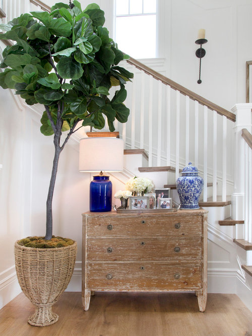 Foyer House St Paul : Coastal foyer home design ideas pictures remodel and decor