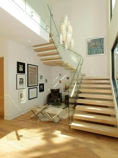 Entry Foyer Lighting Houzz : Contemporary foyer lighting modern entry chandelier for