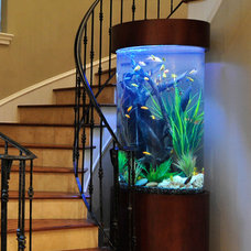 Home Decor by The Fish Gallery