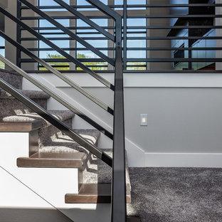 他の地域の中サイズのカーペット敷きのコンテンポラリースタイルのおしゃれな折り返し階段 (カーペット張りの蹴込み板、金属の手すり) の写真