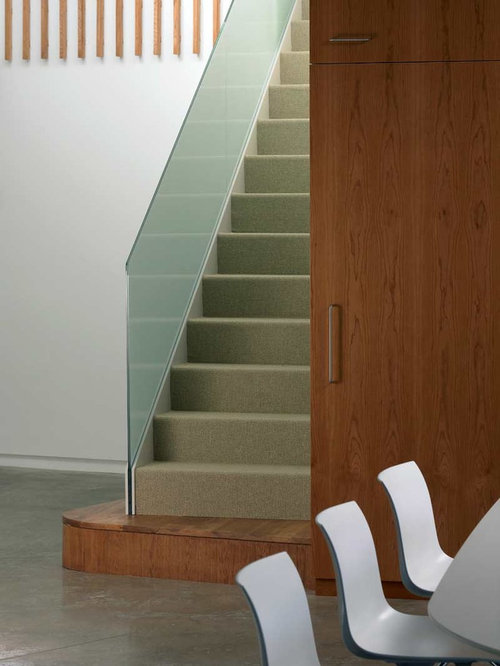 Basement Stairs Design: Carpet Basement Stair Home Design Ideas, Pictures, Remodel