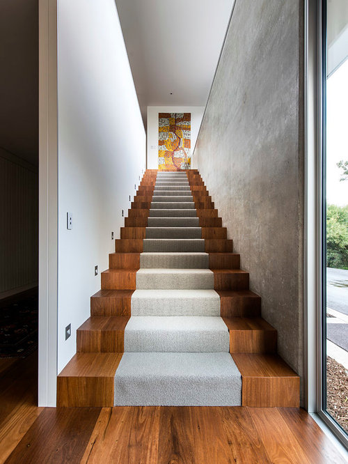 Large Trendy Wooden Straight Staircase Photo In Perth