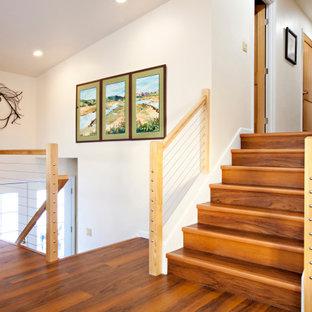 Esempio di una grande scala a rampa dritta classica con pedata acrillica e parapetto in legno
