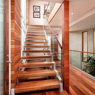 ロサンゼルスの中サイズの木のコンテンポラリースタイルのおしゃれな階段 (ガラスの手すり) の写真