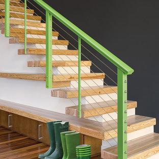 サンフランシスコの木のモダンスタイルのおしゃれなオープン階段の写真