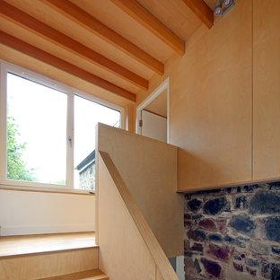 Ejemplo de escalera recta y panelado, contemporánea, de tamaño medio, con escalones de madera, contrahuellas de madera, barandilla de madera y panelado