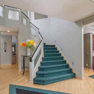 Minimalist carpeted curved staircase photo in Other with glass risers