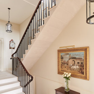 This is an example of a traditional l-shaped metal railing staircase in Other.