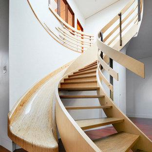 Esempio di una scala curva contemporanea di medie dimensioni con pedata in legno e nessuna alzata