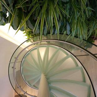 トロントのガラスのモダンスタイルのおしゃれならせん階段の写真