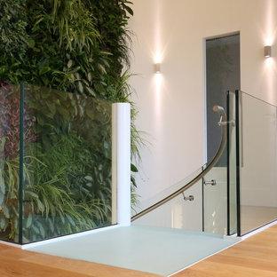 Immagine di una scala a chiocciola minimalista con pedata in vetro