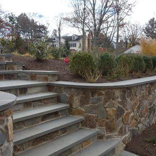Cette image montre un grand escalier courbe traditionnel.