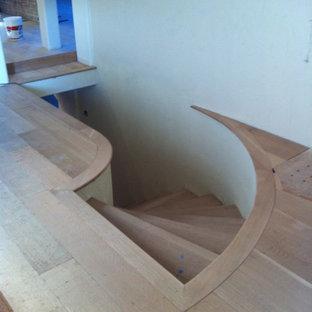 サンフランシスコの中サイズのカーペット敷きのトラディショナルスタイルのおしゃれならせん階段 (カーペット張りの蹴込み板) の写真