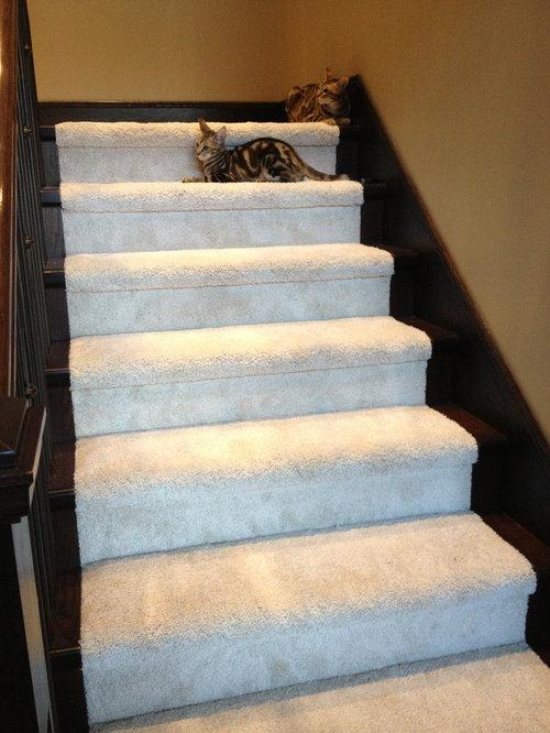 Mohawk Smartstrand Carpet Houzz