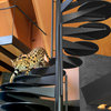 Oklahoma Houzz Tour: Wild Cats Roam This New Prairie-Style Home