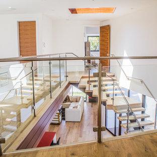Idéer för en stor modern flytande trappa i trä, med öppna sättsteg och räcke i glas
