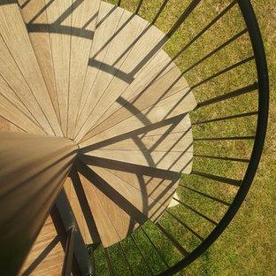 セントルイスの中くらいの木のコンテンポラリースタイルのおしゃれな階段の写真