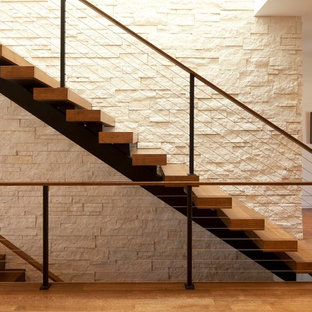 Houzz | 50+ Best Modern Staircase Pictures - Modern Staircase Design ...