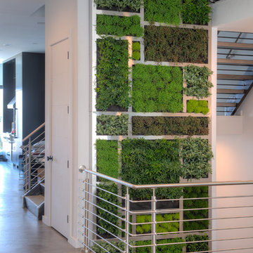 Living Wall at Private Home in Mt Adams