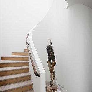 Inspiration för mellanstora moderna svängda trappor, med heltäckningsmatta och sättsteg i trä