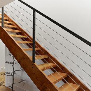 Immagine di una scala a rampa dritta moderna di medie dimensioni con pedata in legno, nessuna alzata e parapetto in cavi
