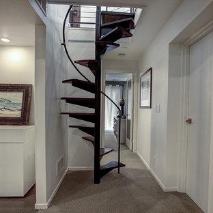 グランドラピッズの小さい木のミッドセンチュリースタイルのおしゃれならせん階段の写真