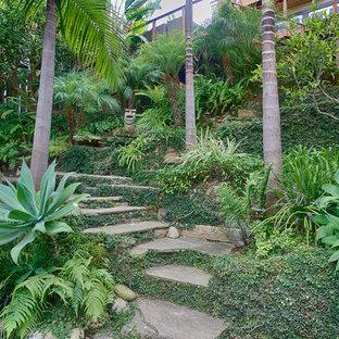 サンディエゴのトロピカルスタイルのおしゃれな階段の写真