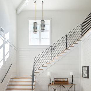 Cottage wooden l-shaped metal railing staircase photo in Tampa with painted risers