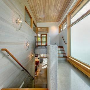 シアトルの木のコンテンポラリースタイルのおしゃれな直階段 (コンクリートの蹴込み板) の写真
