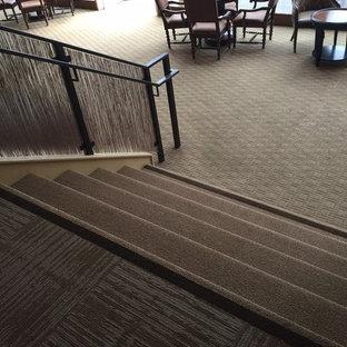 サンフランシスコの小さいカーペット敷きのトラディショナルスタイルのおしゃれな直階段 (カーペット張りの蹴込み板、木材の手すり) の写真