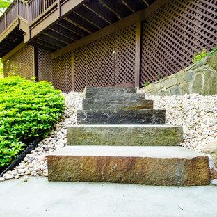 Immagine di una scala a rampa dritta classica di medie dimensioni con pedata in pietra calcarea e alzata in pietra calcarea