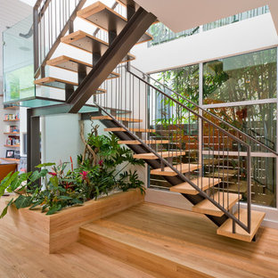 Example of a trendy wooden u-shaped open staircase design in San Francisco