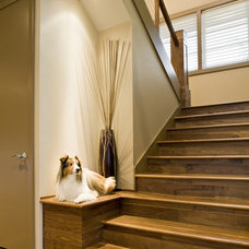 Contemporary Staircase by SRM Architecture and Interiors