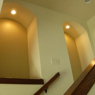 シカゴの中サイズのトランジショナルスタイルのおしゃれならせん階段の写真