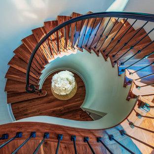 タンパの大きい木の地中海スタイルのおしゃれなサーキュラー階段 (フローリングの蹴込み板、混合材の手すり) の写真
