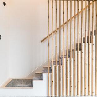 Свежая идея для дизайна: прямая лестница среднего размера в стиле модернизм с деревянными перилами - отличное фото интерьера
