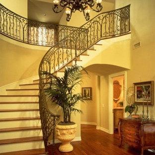 サンディエゴの大きい木の地中海スタイルのおしゃれなサーキュラー階段 (フローリングの蹴込み板、金属の手すり) の写真