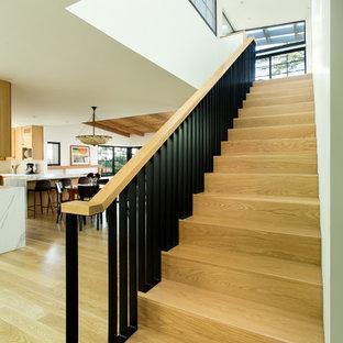 ロサンゼルスの中サイズの木のミッドセンチュリースタイルのおしゃれな直階段 (木の蹴込み板、金属の手すり) の写真