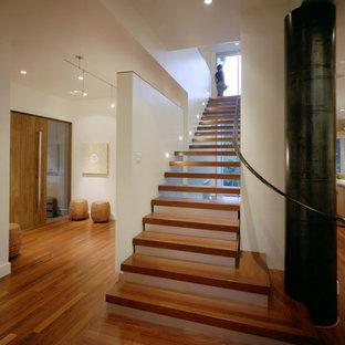 オースティンの木のコンテンポラリースタイルのおしゃれなオープン階段の写真