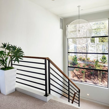 Sandhill Crane - Stairwell