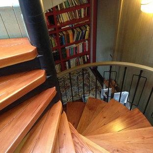 Ispirazione per una scala a chiocciola classica con pedata in legno e alzata in metallo