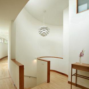 Idee per una scala curva moderna di medie dimensioni con pedata in legno e parapetto in metallo