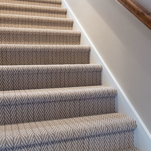 Transitional carpeted straight wood railing staircase photo in Other with carpeted risers