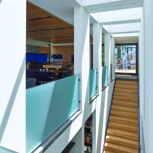 Ejemplo de escalera recta, contemporánea, grande, con escalones de madera, contrahuellas de madera y barandilla de vidrio