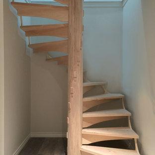 Diseño de escalera de caracol, de estilo americano, pequeña, con escalones de madera