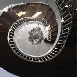 ニューヨークの大きい木のコンテンポラリースタイルのおしゃれならせん階段 (木の蹴込み板) の写真