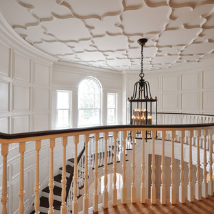 Staircase - traditional wooden curved staircase idea in Newark